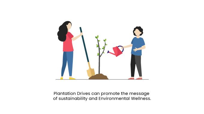 Plantation-Drives