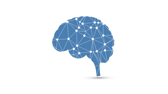 What part of the brain is affected by PTSD